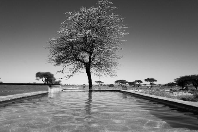 Grégoire De Poorter - grevision - Namibia - Onguma - swimmingpool